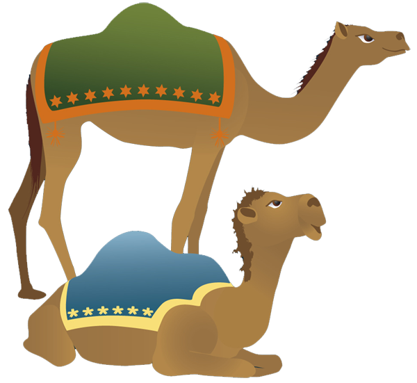 Camel Image Clipart